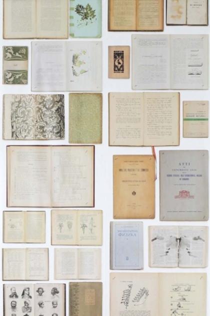 cutout Image of NLXL EKA07 Biblioteca Wallpaper by Ekaterina Panikanova - Cream Books open and closed books in flat lay image