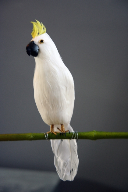 A Fabulous Artificial Bird - Beautiful White Cockatoo