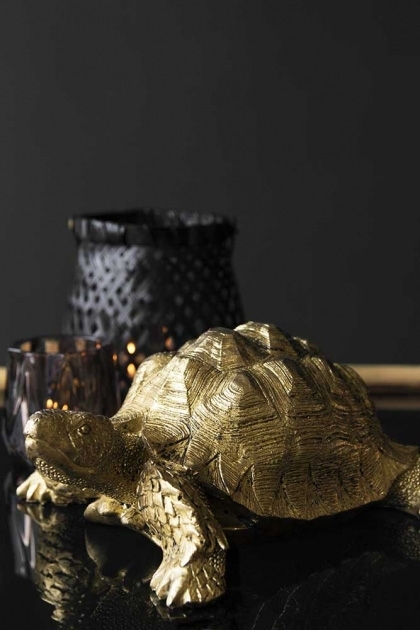 lifestyle image of Side view of Gold Tortoise Ornament sat with other display items on black table and dark wall background