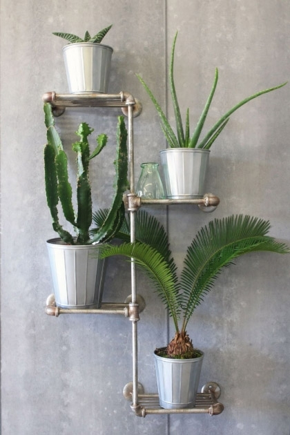 lifestyle image of Industrial Shelving - 4 Tier Unit with plant on each shelf and on grey wall background