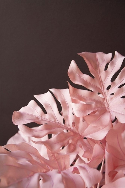 Close-up lifestyle image of the Large Pink Faux Monstera House Plant on dark wall background