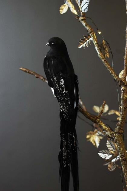 Black Glitter Longtail Feather Bird