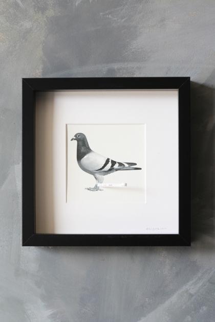 Pigeon Post Messenger - I Love You. Xxx Art Work By Brigitte Herrod