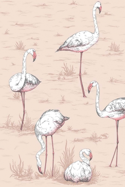 Close-up detail image of the Cole & Son New Contemporary - Flamingos Wallpaper - Ballet Slipper white flamingos with pink beaks on light pink background