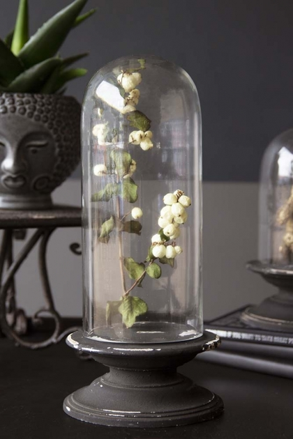 Glass Display Dome With Aged Base - Large