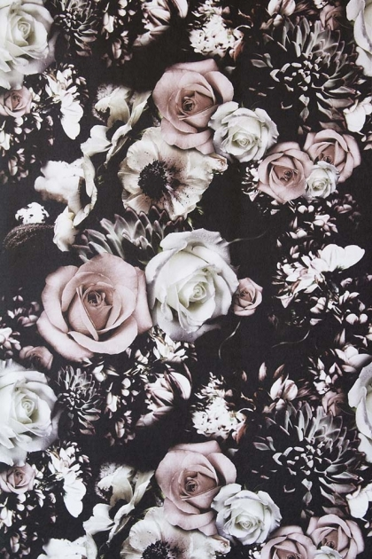 cutout Image of Rockett St George Flower Power Wallpaper - Blush pink and white roses on dark background