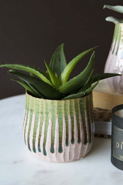Lifestyle image of the Botanical Flower Pot