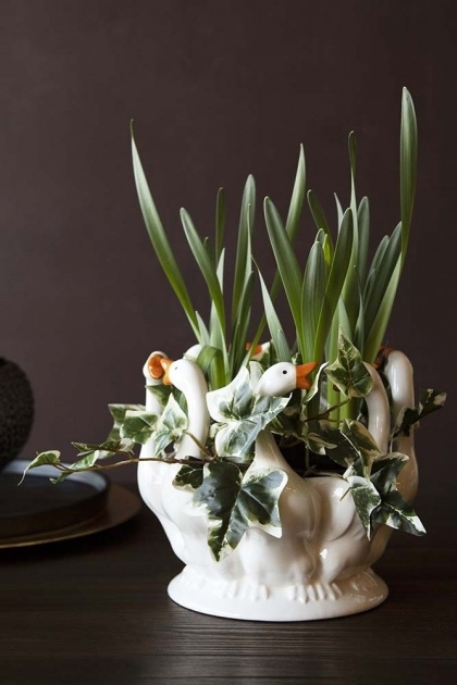 Lifestyle image of the White Pekin Ducks Plant Pot Vase with plants in it on dark wooden surface and dark wall background