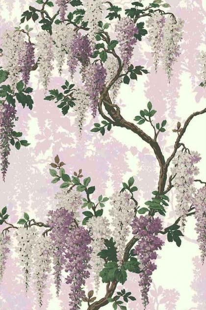 detail image of the Lilac Bloom Wallpaper by Pearl Lowe purple and lilac wisteria flowers with green leaves on brown branches on pale background