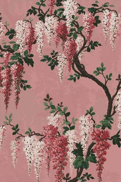 detail image of the Wisteria Pink Bloom Wallpaper by Pearl Lowe pale pink and dark pink wisteria flowers with green leaves and brown branches on pink background