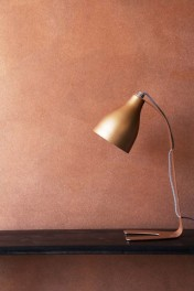 Craig & Rose Artisan Copper Effect Paint