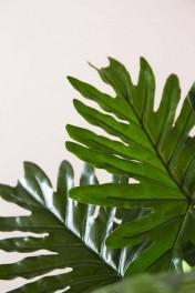 Faux Philodendron Jungle Plant