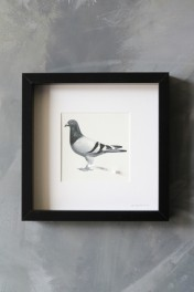 Pigeon Post Messenger - Bring More Wine. X Art Work By Brigitte Herrod