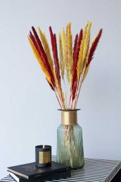Set Of 6 Stems Of Dark Red & Golden Coloured Pampas Reeds