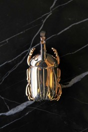 Gold Insect Beer Bottle Opener