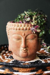 Terracotta Distressed Stone Effect Buddha Planter