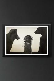 Unframed Unusual Encounter Fine Art Print