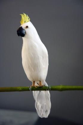 A Fabulous Artificial Bird - Beautiful White Cockatoo