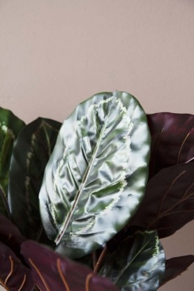 Faux Calathea Jungle Plant