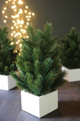 lifestyle image of Faux Miniature Pine Tree with others in background on wooden table and fairy lights