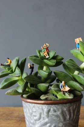 Tiny (And A Little Bit Rude) Terrarium Figures