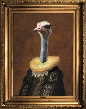 cutout image of ostrich canvas angela rossi ostrich in renaissance clothing on brown background with gold frame