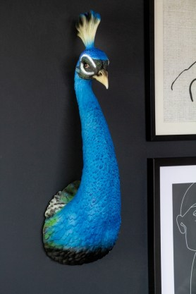 Front-on lifestyle image of the Beautiful Blue Peacock Head Wall Decoration