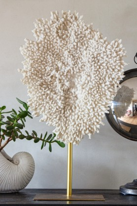 Lifestyle image of the Faux Coral Display Ornament On A Stand