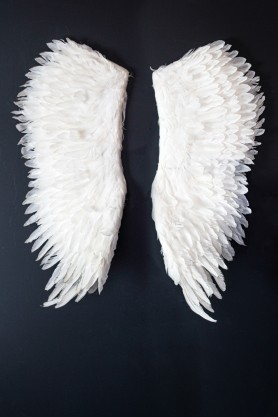 Image of the Large White Feather Angel Wings hanging on the wall