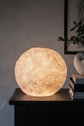 Lifestyle image of the LED Coral Table Lamp switched on