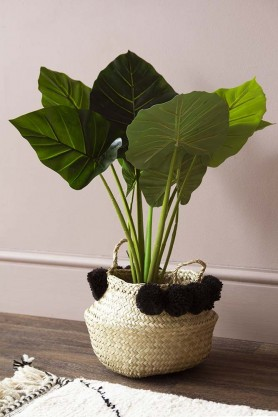 Faux Taro Jungle Plant