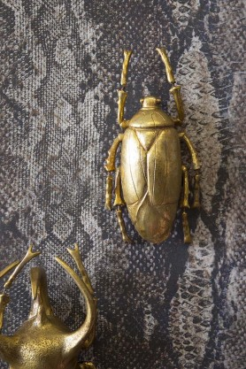 Gold Plant Beetle Wall Decoration