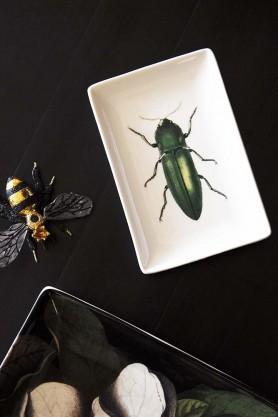 Green Beetle Trinket Tray