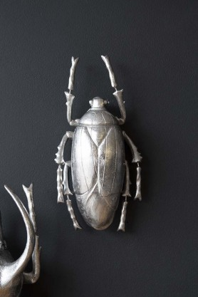 Silver Plant Beetle Hanging On A Wall