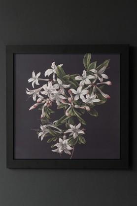 Unframed Pretty Floral Azalea Art Print