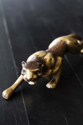 lifestyle image of Stalking Brass Jaguar Ornament on dark wooden background