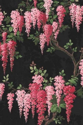 detail image of the Wisteria Noir Black Wallpaper by Pearl Lowe pink wisteria flowers with green leaves and brown branches on dark background