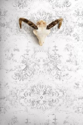 lifestyle image of Young & Battaglia Vintage Delf Wallpaper - Almost White with skull wall ornament