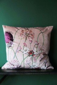Allium Velvet Cushion - Blush Pink