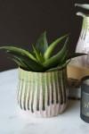 Botanical Flower Pot
