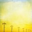 Unframed Boardwalk Sunshine Art Print