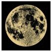 Unframed Gold Moon Art Print