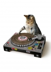 Image of the Turntable Cat Scratch Mat on a white background