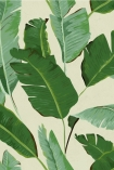 detail image of Mind The Gap Banana Leaves Wallpaper green toned banana leaves on pale yellow background repeated pattern