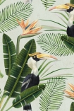 Mind The Gap Birds Of Paradise Wallpaper