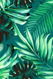 detail image of Mind The Gap Rainforest Wallpaper green toned palm leaves on green background repeated pattern