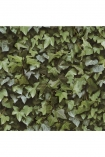 detail image of Koziel Ivy Wallpaper green ivy repeated pattern on white background