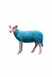 cutout image of Pikes At Rockett St George - Blue Party Sheep on white background