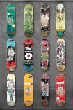cutout Image of Mr Perswall Wallpaper - Adventure Collection - Line Up Skateboards