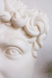 Close-up image of the eye and hair on the Fragment Of Michelangelo's David Wall Art